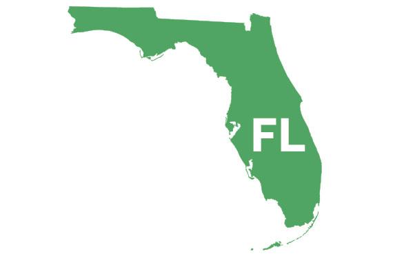 Florida Phlebotomy Schools
